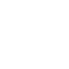 pre purchase inspection - auckland