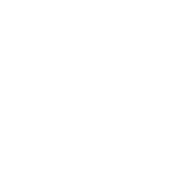 pre purchase inspection - canterbury