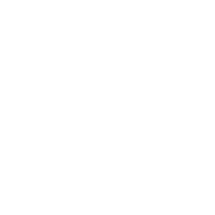 pre purchase inspection -southland